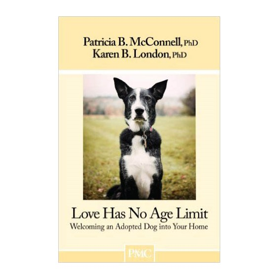 love_has_no_age_limit_cover