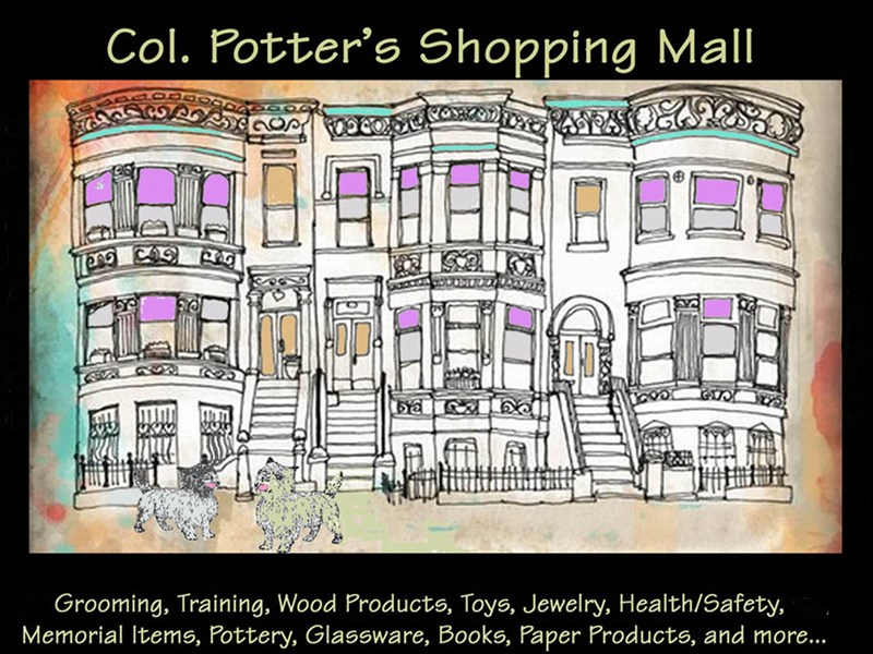 STORES_MALL_GRAPHIC_AMY
